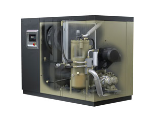 Rotary Positive Compressors About Cagi Compressed